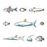 Διανυσματικό σύνολο εικονιδίων ψαριών σχεδίου γραμμών Στοκ Εικόνες