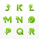 Διανυσματικό σύνολο πράσινου λογότυπου επιστολών eco με τα φύλλα Οικολογικό fon Στοκ Φωτογραφίες