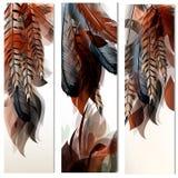 Διανυσματικό σύνολο προτύπων ταυτότητας με τα ζωηρόχρωμα φτερά Στοκ Φωτογραφίες