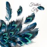 Διανυσματικό υπόβαθρο μόδας με τα μπλε φτερά Στοκ εικόνα με δικαίωμα ελεύθερης χρήσης