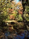 Ιαπωνία, πάρκο, φθινόπωρο στοκ εικόνα