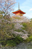 Ιαπωνία στην άνοιξη στοκ εικόνες