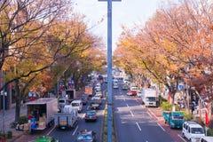 Ιαπωνία στην εποχή φθινοπώρου Στοκ Εικόνες