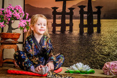 Ιαπωνία Στοκ εικόνες με δικαίωμα ελεύθερης χρήσης