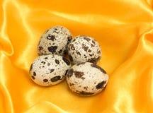 Ιαπωνικά αυγά ορτυκιών Στοκ Εικόνες
