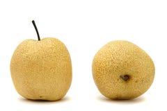 ιαπωνικά αχλάδια στοκ εικόνα