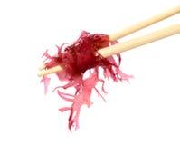 ιαπωνικά σούσια αλγών Στοκ Φωτογραφίες