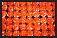 Ιαπωνικά τρόφιμα, μακροεντολή στα σούσια στοκ φωτογραφίες