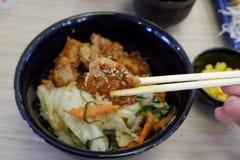 Ιαπωνικά τρόφιμα, μπριζόλα χοιρινού κρέατος χρήσης που τρώει στοκ εικόνες