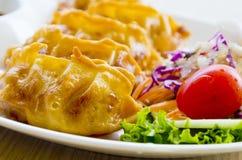 Ιαπωνικά τρόφιμα Gyoza Στοκ Εικόνες
