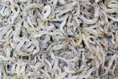 Ιαπωνική κουζίνα, άνευ ραφής εικόνα κατά το ήμισυ ξηρού λίγο ψάρι θερμ. Στοκ Εικόνες