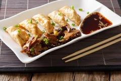 Ιαπωνική κουζίνα: gyoza με τη σαλάτα της σάλτσας φυκιών και σόγιας στο α Στοκ Εικόνες