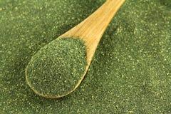 Ιαπωνική πράσινη σκόνη τσαγιού, τσάι Matcha Στοκ εικόνες με δικαίωμα ελεύθερης χρήσης