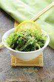 Ιαπωνική σαλάτα φυκιών Chuka Στοκ φωτογραφία με δικαίωμα ελεύθερης χρήσης