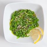 Ιαπωνική σαλάτα φυκιών Chuka Wakame με τη σάλτσα σουσαμιού Στοκ Εικόνες