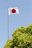 Ιαπωνική σημαία Στοκ εικόνες με δικαίωμα ελεύθερης χρήσης