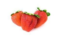 Ιαπωνική φράουλα Στοκ Εικόνα
