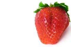 Ιαπωνική φράουλα Στοκ εικόνα με δικαίωμα ελεύθερης χρήσης