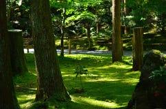 Ιαπωνικοί κήπος και βρύο, Κιότο Ιαπωνία Στοκ φωτογραφίες με δικαίωμα ελεύθερης χρήσης