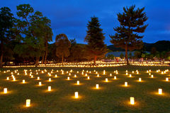 Ιαπωνικός εορτασμός Στοκ Εικόνες