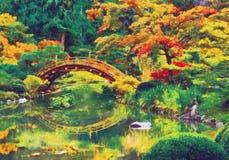 Ιαπωνικός κήπος με τη γέφυρα πέρα από μια λίμνη ελεύθερη απεικόνιση δικαιώματος