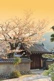 Ιαπωνικός κήπος σε Arashiyama, Κιότο, Ιαπωνία Στοκ φωτογραφίες με δικαίωμα ελεύθερης χρήσης