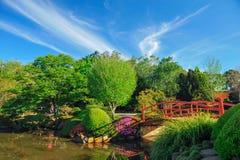 Ιαπωνικός κήπος σε Toowoomba Στοκ Εικόνα