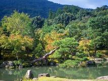 Ιαπωνικός κήπος στο ναό Tenryuji Στοκ φωτογραφίες με δικαίωμα ελεύθερης χρήσης