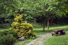Ιαπωνικός κήπος στο πάρκο dendro Birulevsky στη Μόσχα στοκ εικόνα με δικαίωμα ελεύθερης χρήσης