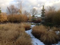 Ιαπωνικός κήπος στο wintertime Στοκ φωτογραφία με δικαίωμα ελεύθερης χρήσης