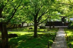 Ιαπωνικός κήπος του ναού Daitokuji, Κιότο Ιαπωνία Στοκ εικόνες με δικαίωμα ελεύθερης χρήσης