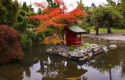 Ιαπωνικός κήπος του Τακόμα Στοκ Φωτογραφίες