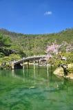 Ιαπωνικός παραδοσιακός κήπος, ξύλινη γέφυρα. Στοκ εικόνα με δικαίωμα ελεύθερης χρήσης
