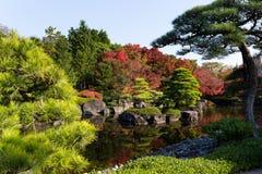 Ιαπωνικός παραδοσιακός κήπος Kokoen φθινοπώρου Στοκ Εικόνα