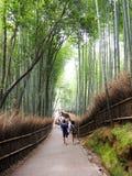 Ιαπωνικό δάσος μπαμπού Στοκ Εικόνες