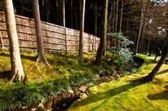 Ιαπωνικό δάσος στοκ φωτογραφία