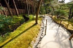 Ιαπωνικό δάσος Στοκ Φωτογραφίες