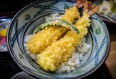 Ιαπωνικό γεύμα, τένοντας Tempura και Donburi Στοκ φωτογραφία με δικαίωμα ελεύθερης χρήσης