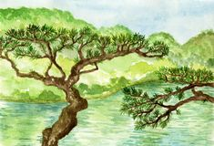 Ιαπωνικό δέντρο πεύκων στην ακτή της λίμνης, παραδοσιακός κήπος της Ιαπωνίας, χρωματισμένη χέρι απεικόνιση watercolor διανυσματική απεικόνιση