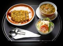 Ιαπωνικό κάρρυ χοιρινού κρέατος τηγανητών τροφίμων Στοκ φωτογραφία με δικαίωμα ελεύθερης χρήσης