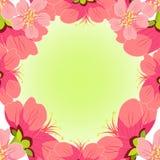 Ιαπωνικό και κινεζικό κεράσι καρτών επίσης corel σύρετε το διάνυσμα απεικόνισης Στοκ Εικόνα