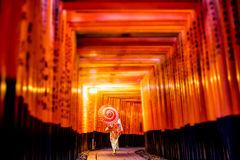 Ιαπωνικό κορίτσι σε Yukata με την κόκκινη ομπρέλα σε Fushimi Inari Shrin στοκ εικόνα με δικαίωμα ελεύθερης χρήσης
