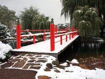 ιαπωνικό κόκκινο χιόνι κήπω&nu Στοκ Εικόνες