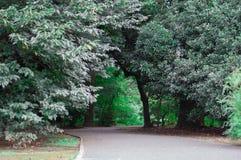 ιαπωνικό πάρκο Το καλοκαίρι είναι πολύ πράσινη εποχή της Ιαπωνίας Θερινή περίοδο του Κιότο είναι ο πολύ καλός συγχρονισμός για να στοκ εικόνες
