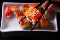 Ιαπωνικό πιάτο σουσιών Στοκ φωτογραφία με δικαίωμα ελεύθερης χρήσης