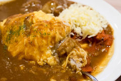 Ιαπωνικό ρύζι κάρρυ Στοκ Εικόνες