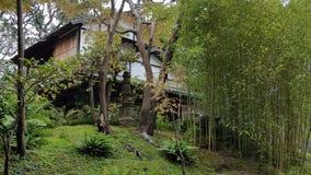 Ιαπωνικό σπίτι στον κήπο με τα δέντρα και το μπαμπού Στοκ εικόνες με δικαίωμα ελεύθερης χρήσης