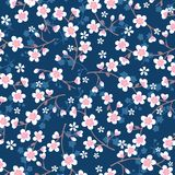 Ιαπωνικό σχέδιο ανθών κερασιών στο μπλε Στοκ εικόνα με δικαίωμα ελεύθερης χρήσης