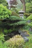 Ιαπωνικό τοπίο κήπων τσαγιού στο χρυσό πάρκο πυλών, Σαν Φρανσίσκο ΗΠΑ Στοκ Εικόνες