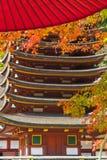 Ιαπωνικό φθινόπωρο ταξίδι του Νάγκουα, Ιαπωνία στοκ εικόνες με δικαίωμα ελεύθερης χρήσης